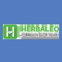 Herbaleo dimancy
